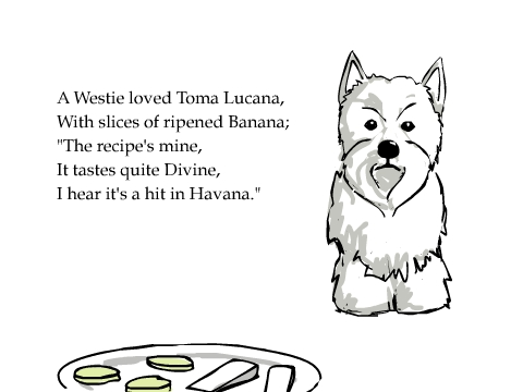 A Westie loved Toma Lucana, With slices of ripened Banana; 'The recipe's mine, It tastes quite Divine, I hear it's a hit in Havana.'